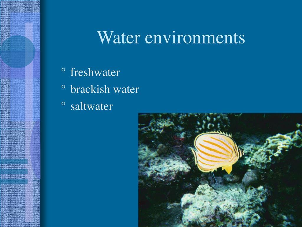 Water environments
