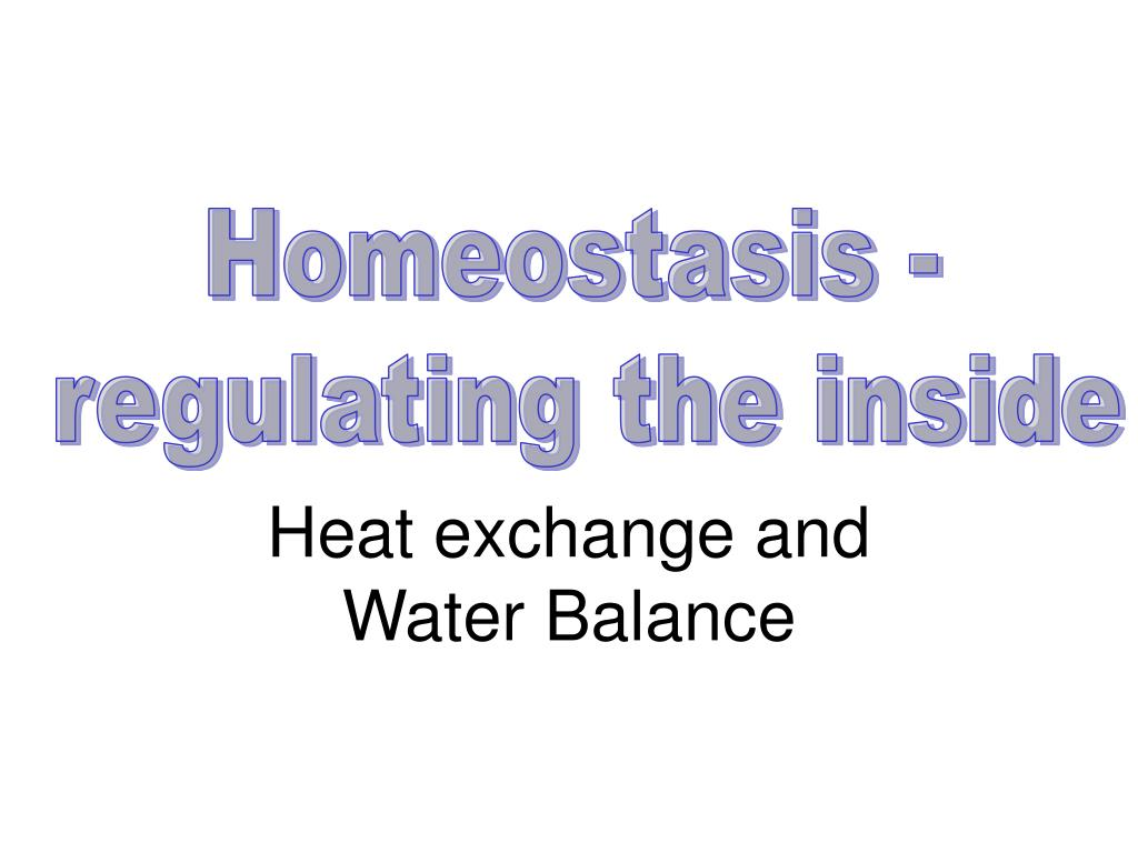 heat exchange and water balance l.