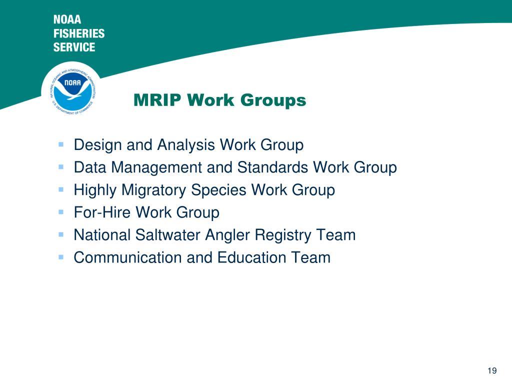 MRIP Work Groups