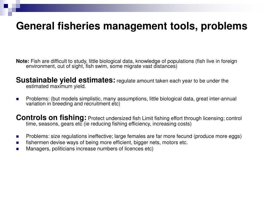 General fisheries management tools, problems
