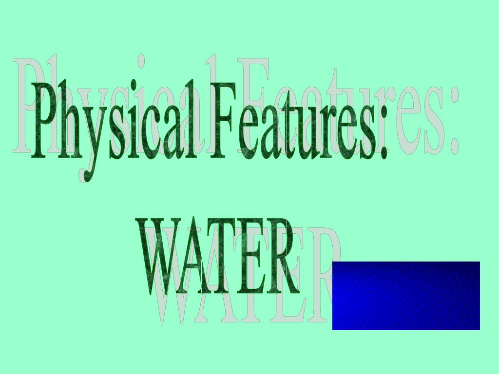 Physical Features: