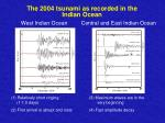 the 2004 tsunami as recorded in the indian ocean