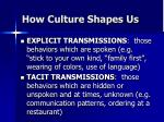 how culture shapes us