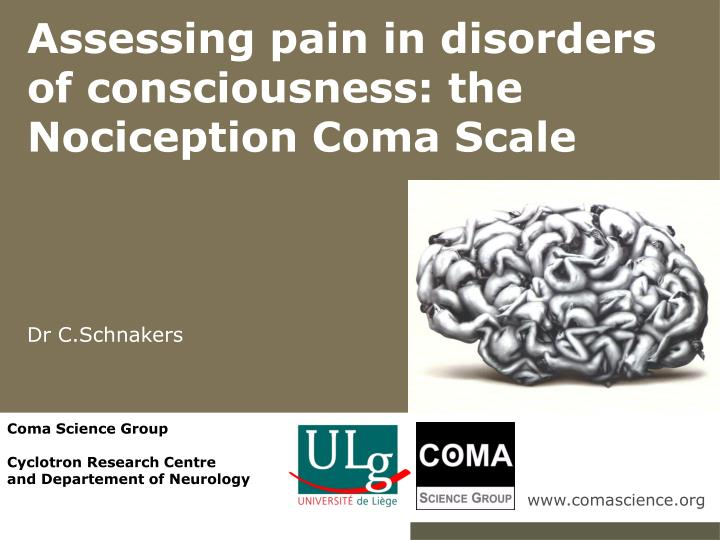assessing pain in disorders of consciousness the nociception coma scale dr c schnakers n.