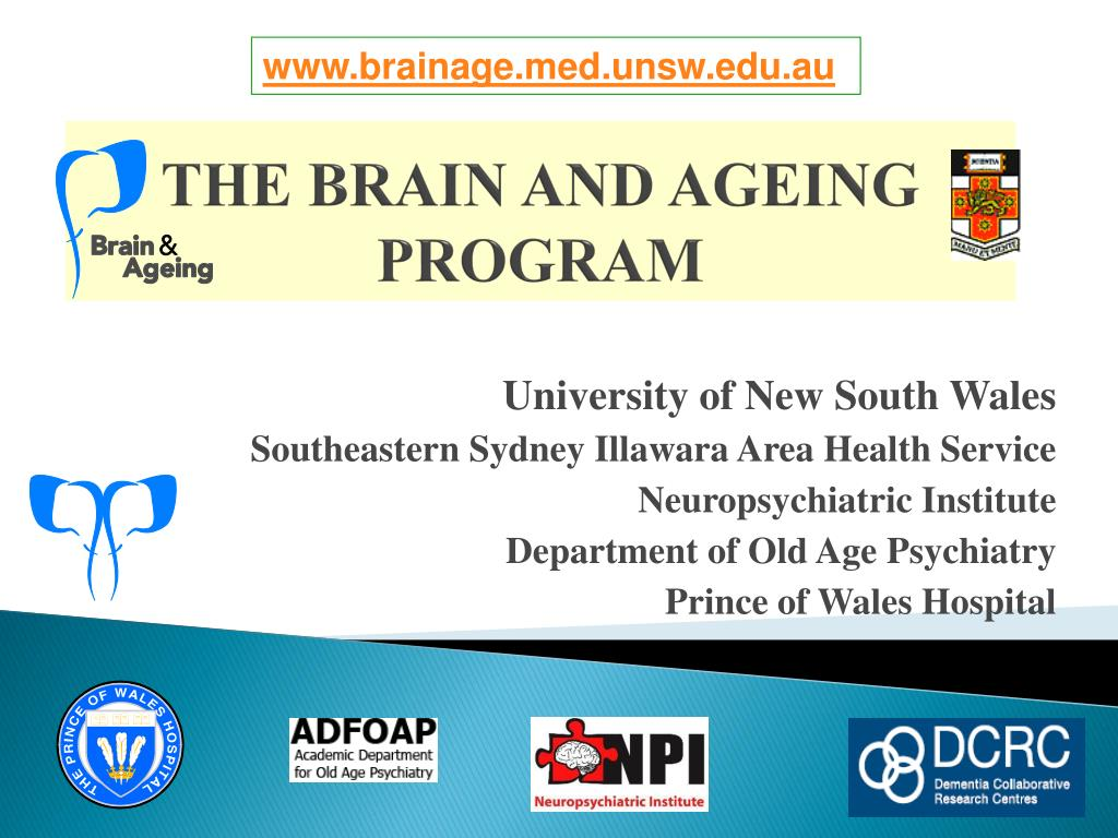 the brain and ageing program l.
