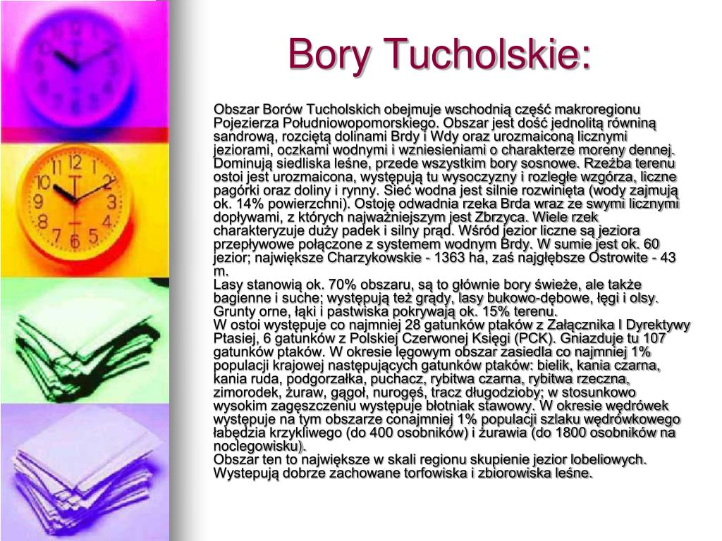 Bory Tucholskie: