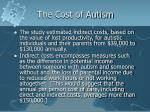 the cost of autism15