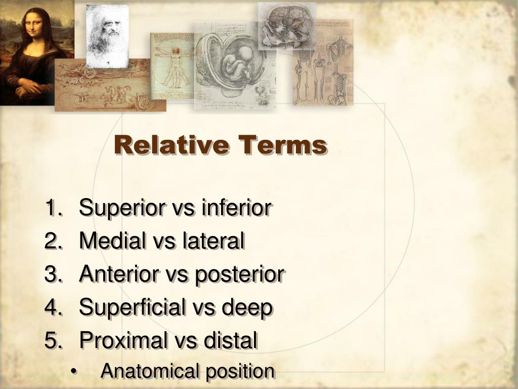 Relative Terms