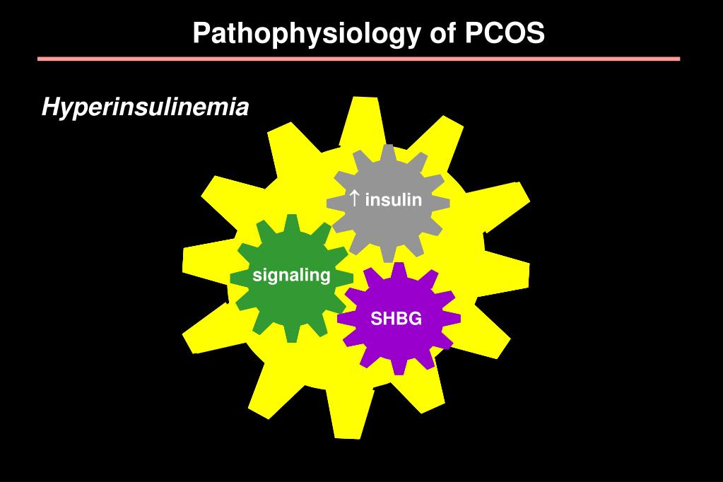 Pathophysiology of PCOS