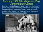 february 1966 life magazine dog concentration camps