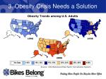 3 obesity crisis needs a solution