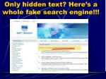 only hidden text here s a whole fake search engine