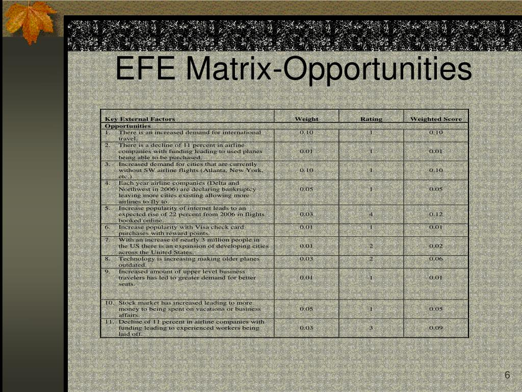 EFE Matrix-Opportunities