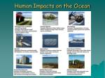 human impacts on the ocean