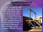 haman is hanged on his own gallows