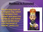 mordecai is promoted