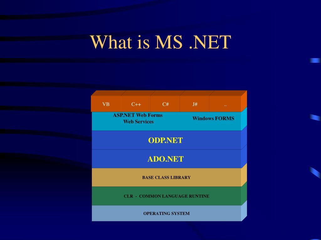 What is MS .NET