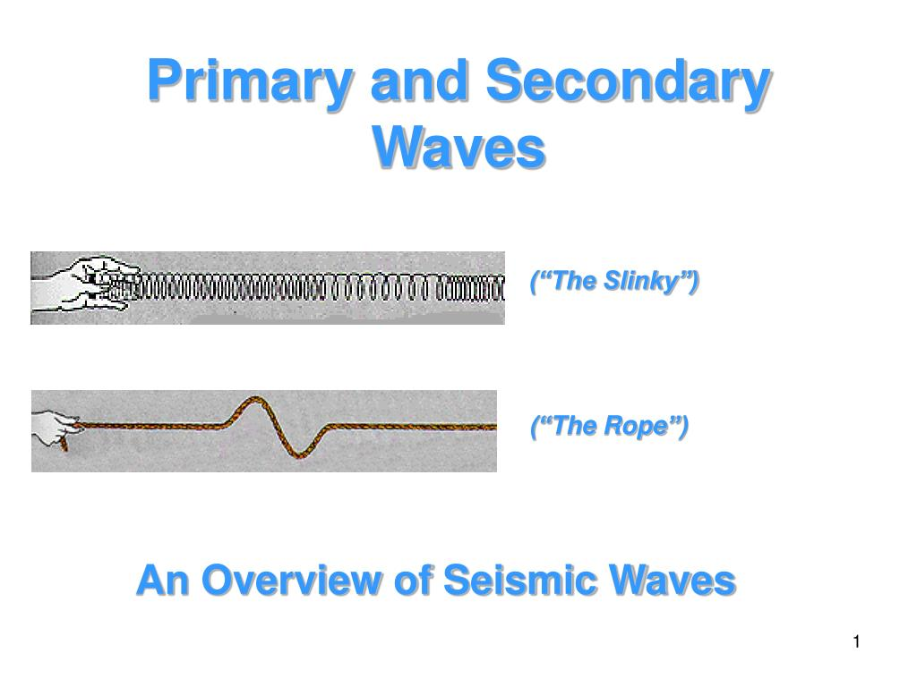 primary and secondary waves l.