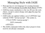 managing style with jass
