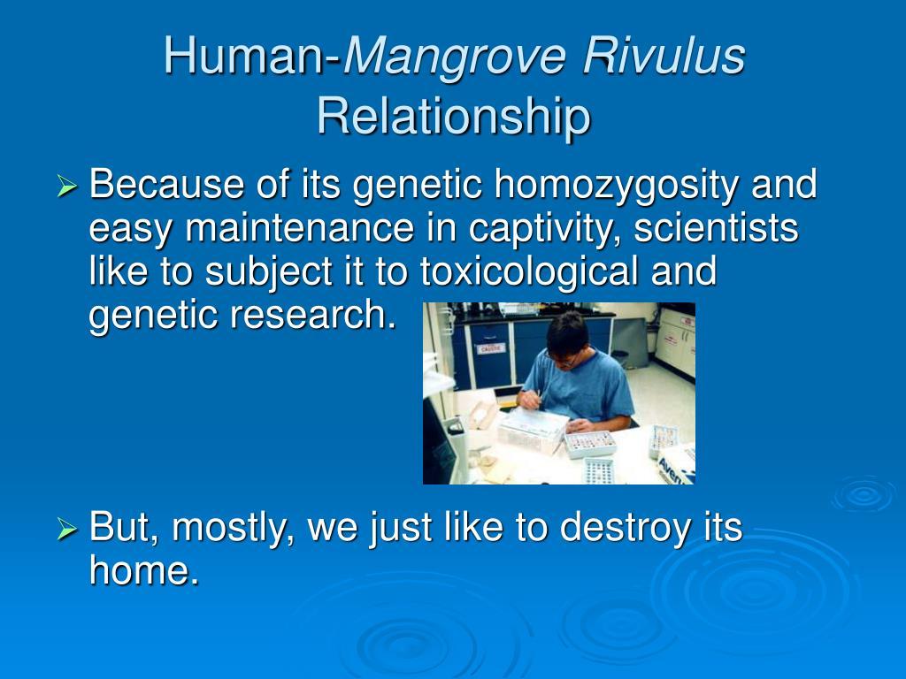 Human-