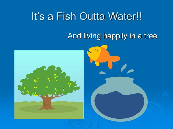 It s a fish outta water