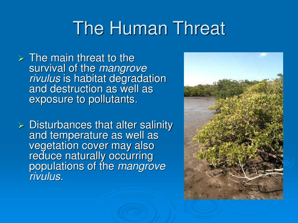 The Human Threat