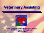 veterinary assisting