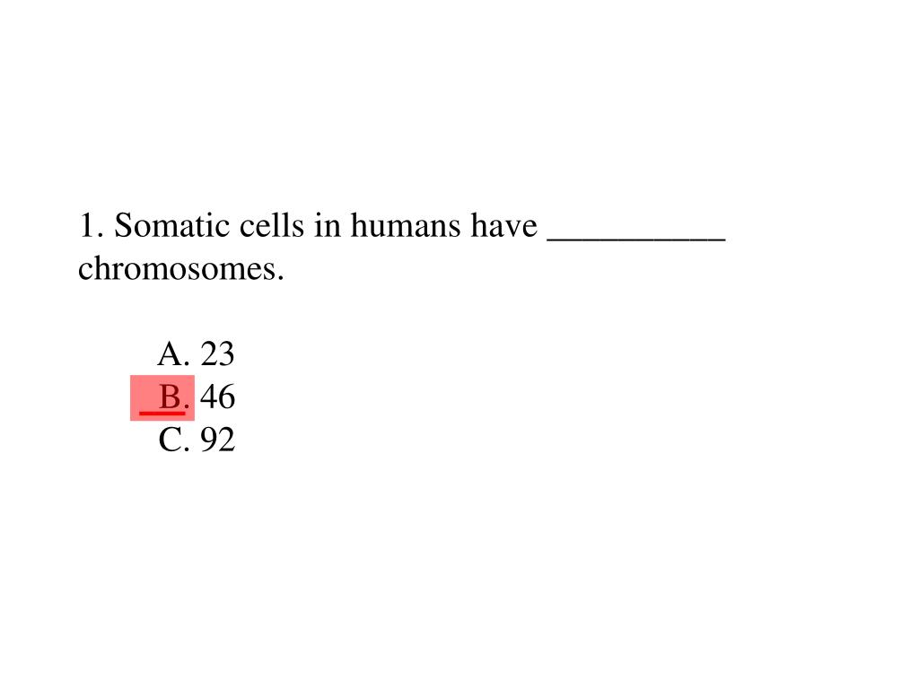 1 somatic cells in humans have chromosomes a 23 b 46 c 92 l.