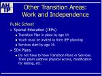 other transition areas work and independence