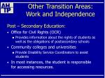 other transition areas work and independence55