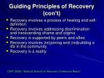 guiding principles of recovery con t