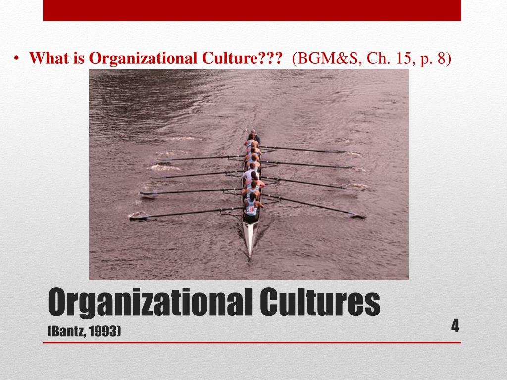 What is Organizational Culture???