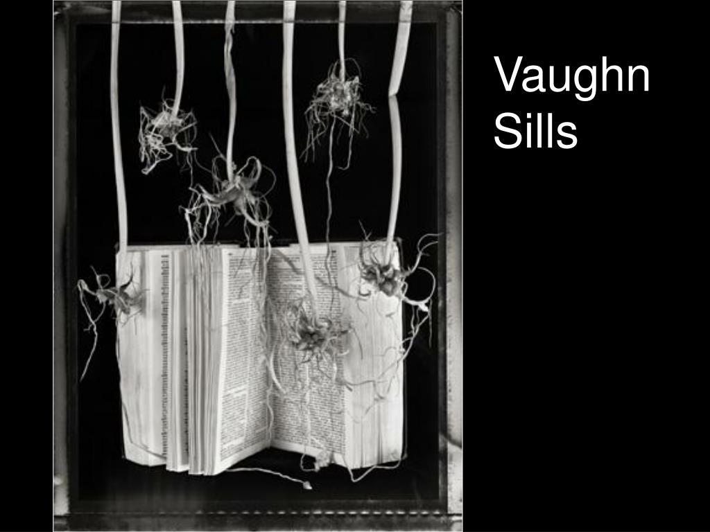 Vaughn Sills