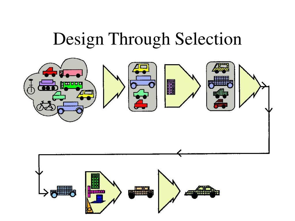 Design Through Selection