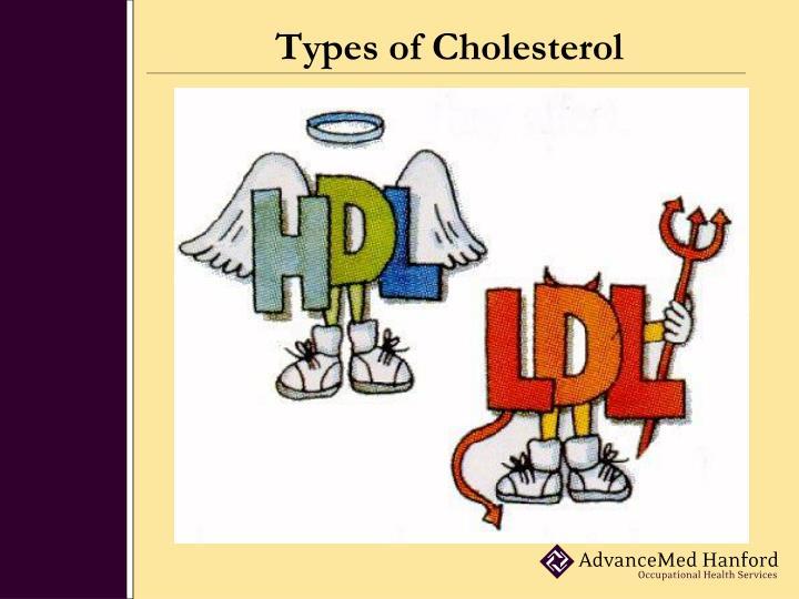 Types of cholesterol