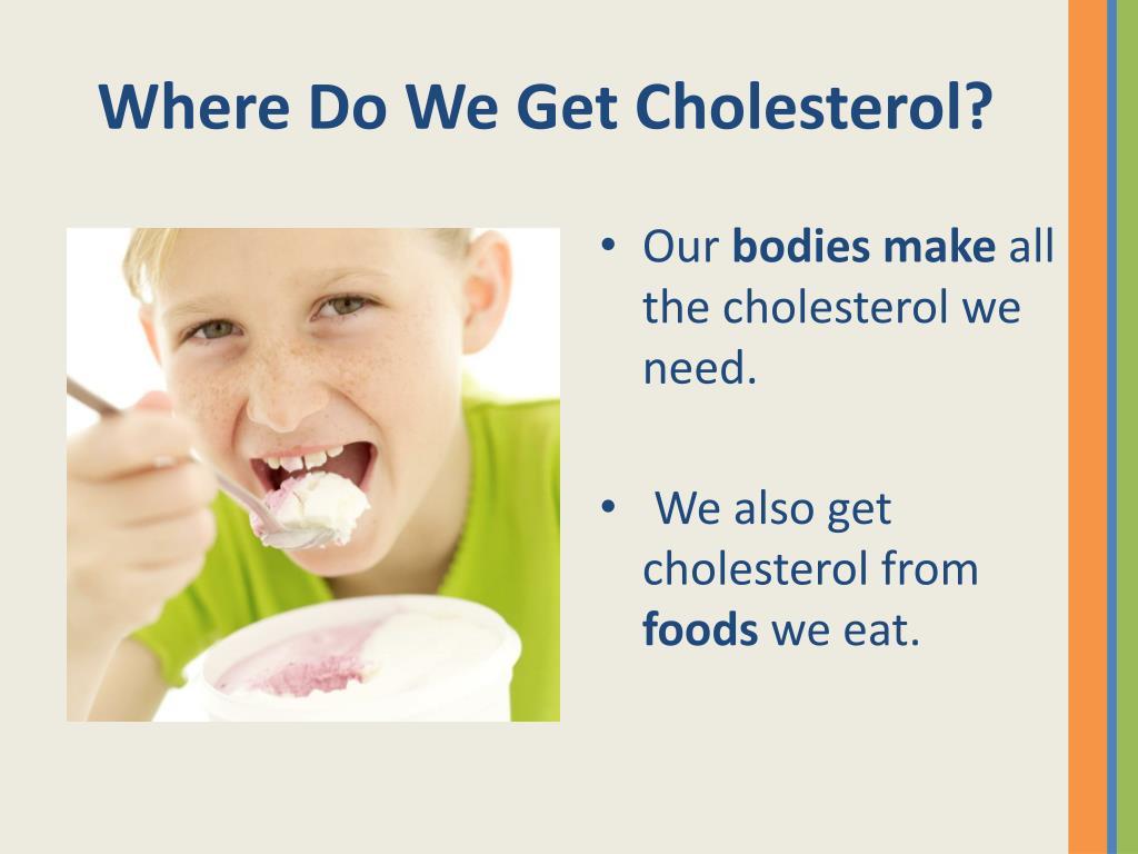 Where Do We Get Cholesterol?