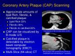 coronary artery plaque cap scanning
