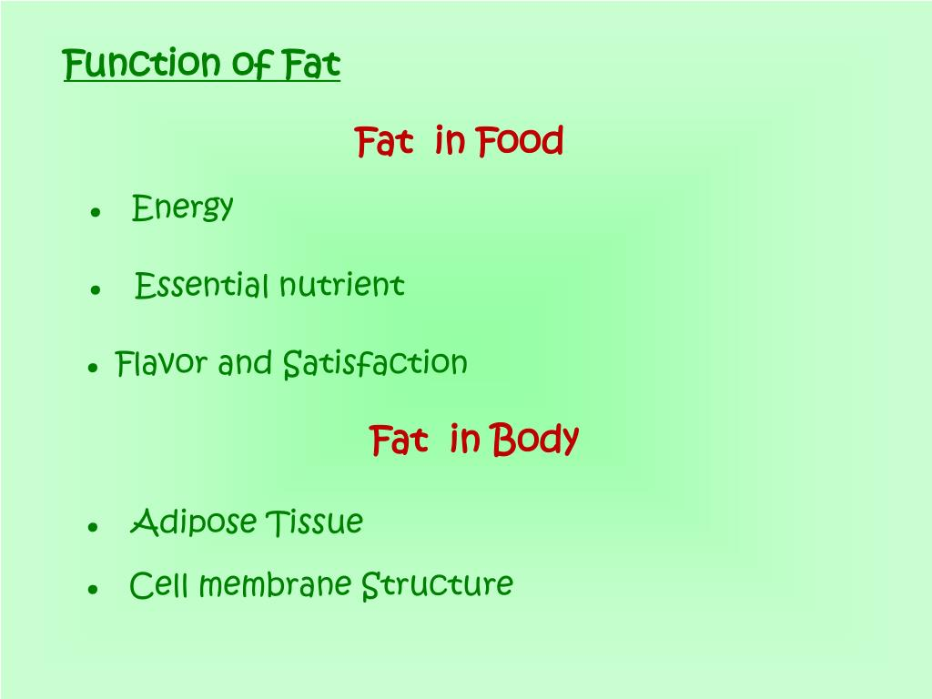 Function of Fat
