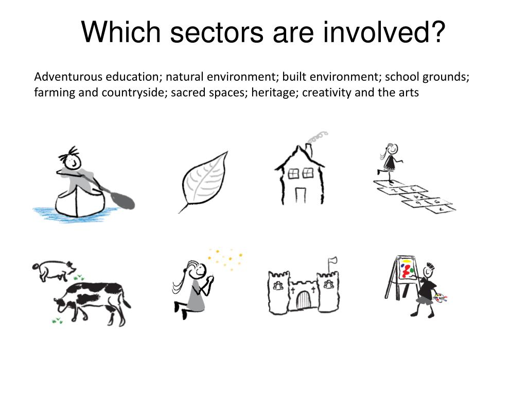 Which sectors are involved?