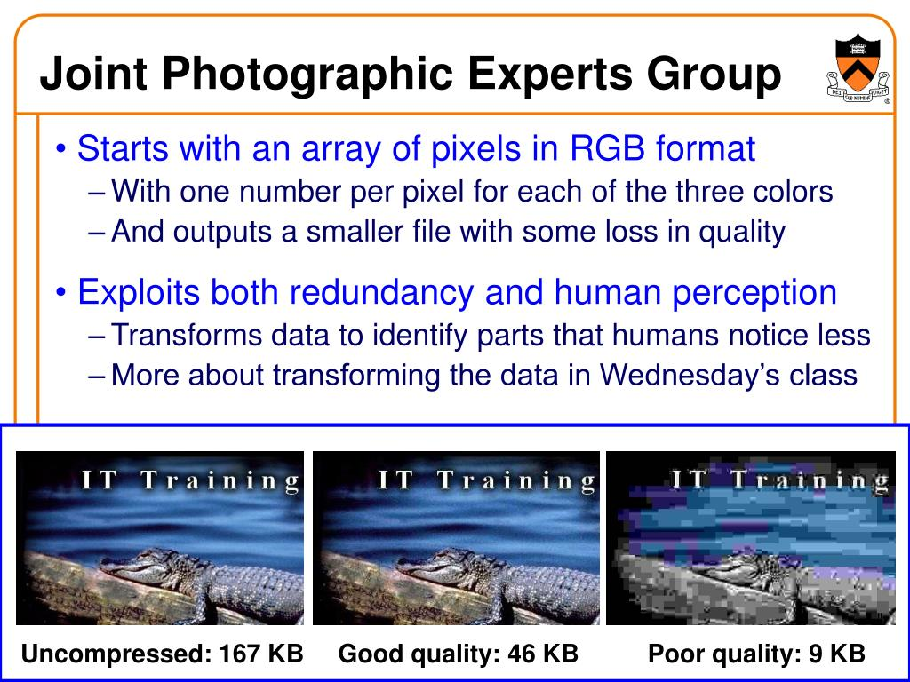 Joint Photographic Experts Group
