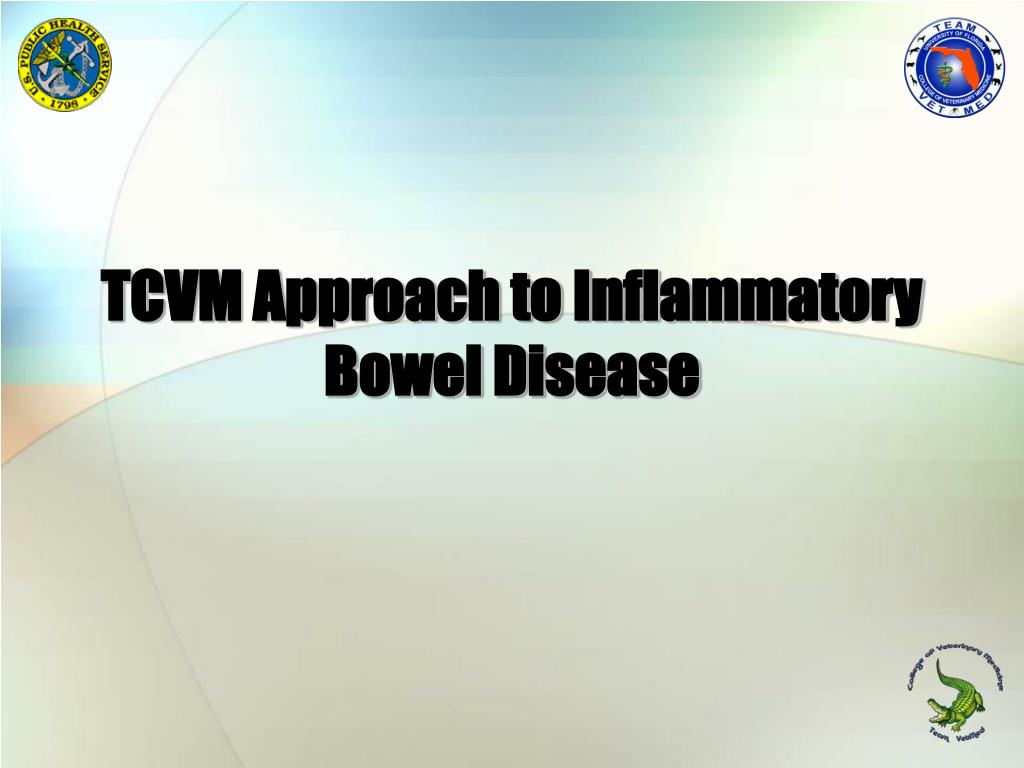 tcvm approach to inflammatory bowel disease l.
