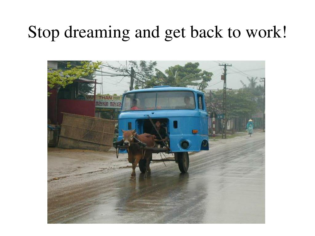 Stop dreaming and get back to work!