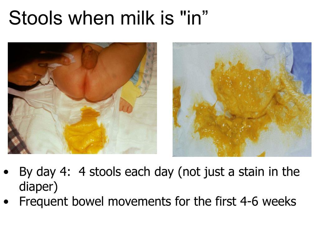 "Stools when milk is ""in"""