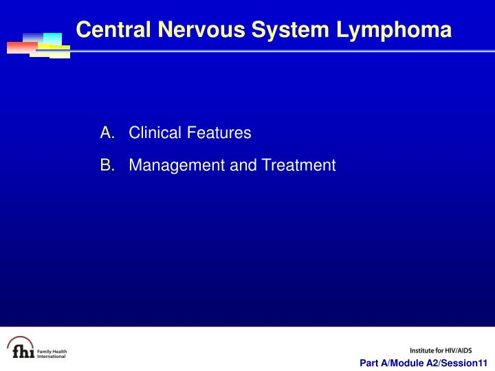 Central Nervous System Lymphoma