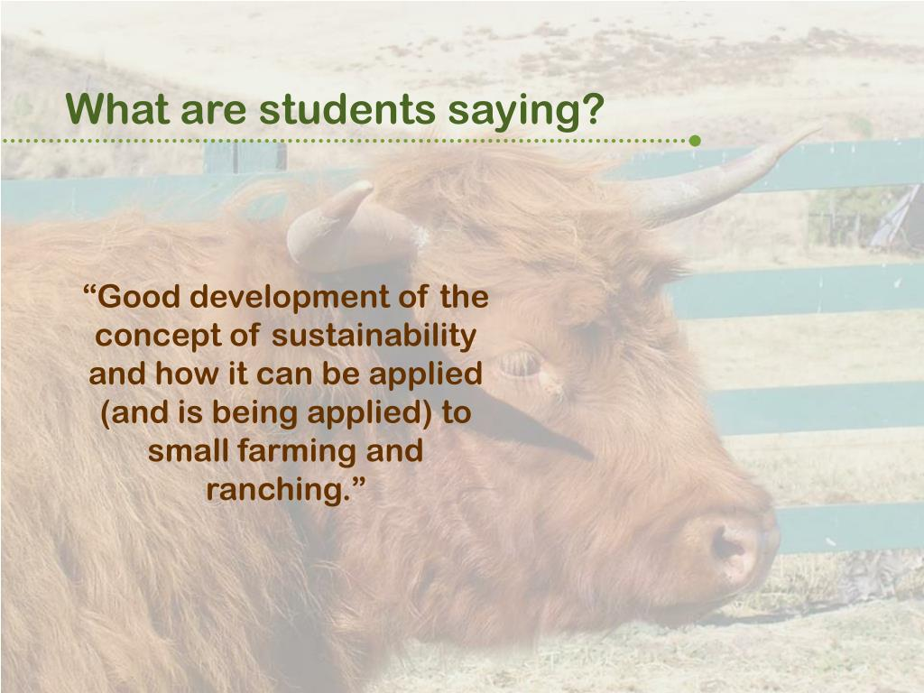 What are students saying?