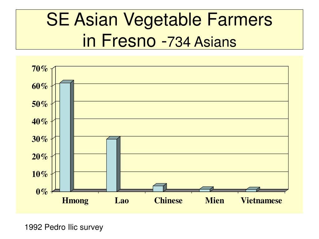 SE Asian Vegetable Farmers