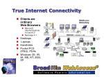 true internet connectivity