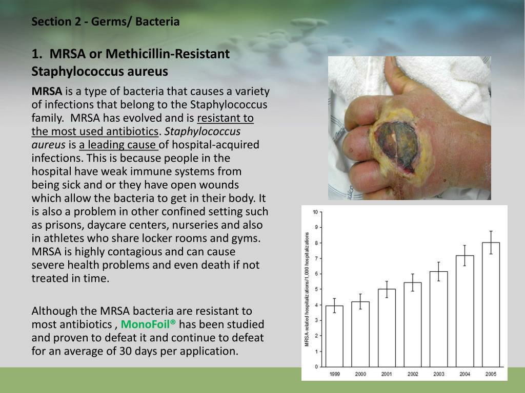 Section 2 - Germs/ Bacteria