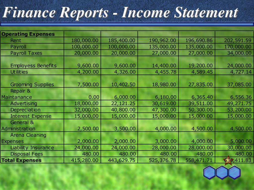 Finance Reports - Income Statement