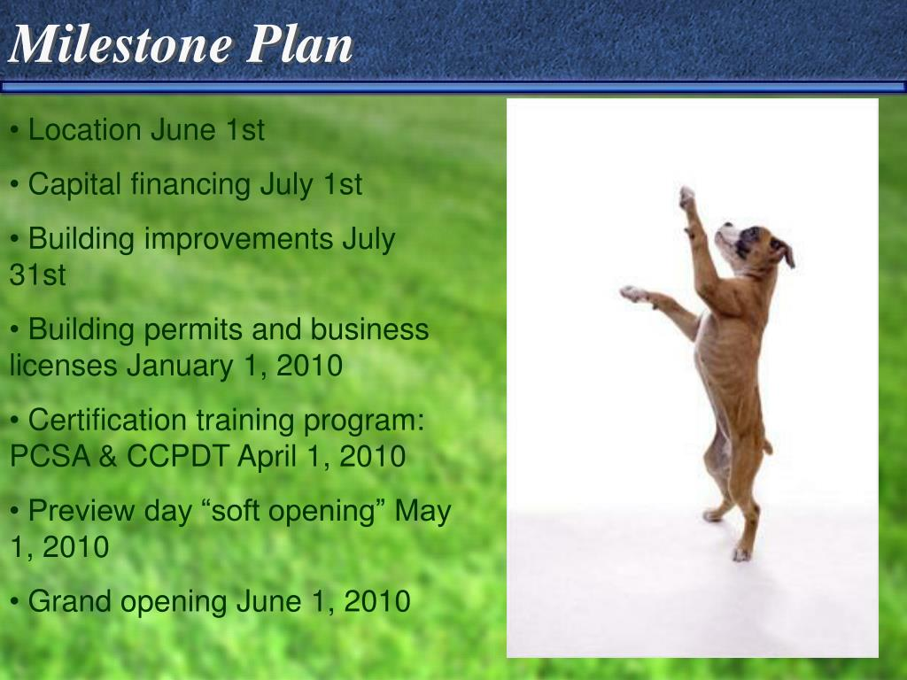 Milestone Plan